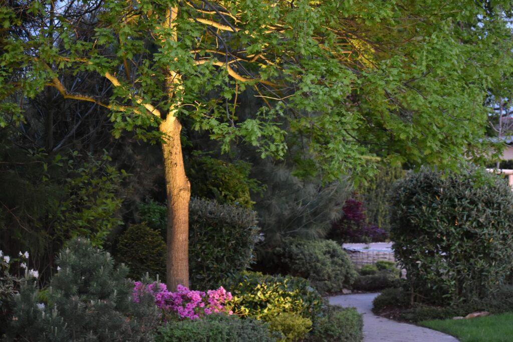 Holas Lighting - osvětlení zahrady